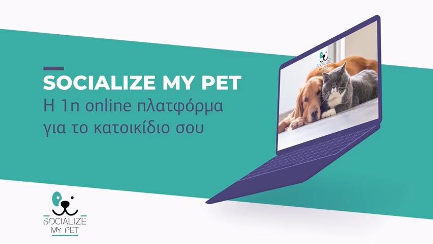 Socialize my pet